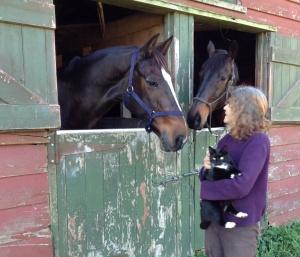 Deidre conversing with her horses
