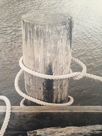 Photo of a Photo Anchor Post at Waitap Wharf by Emma